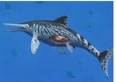 once letras lagarto marino arcaico de pico largo era el ictiosaurio